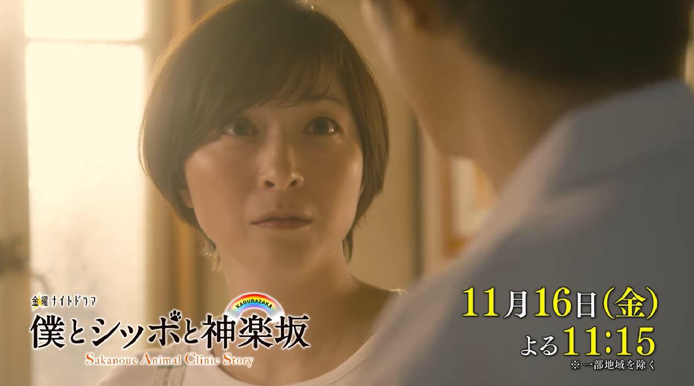 5 アン 話 dailymotion ナチュラル